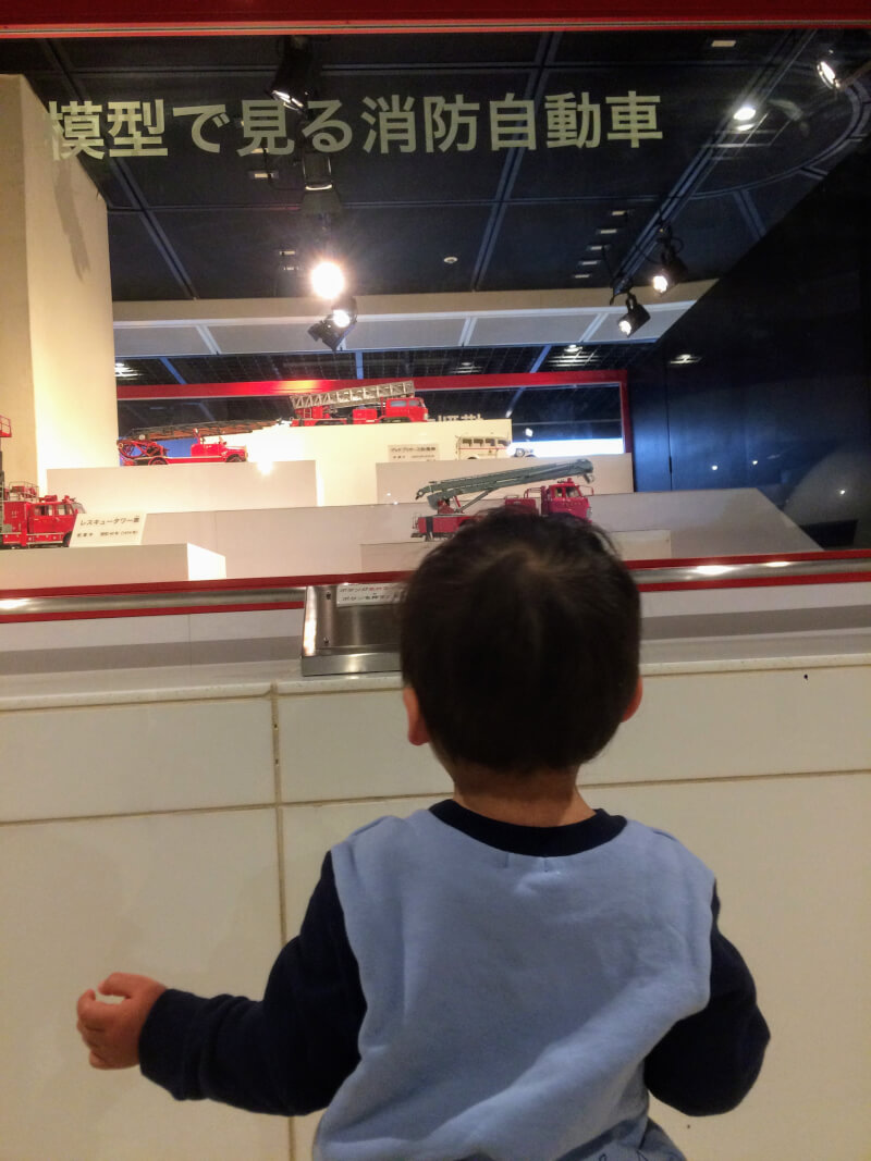 消防車の模型を見る息子