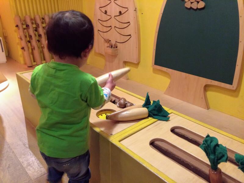 野菜を収穫する息子